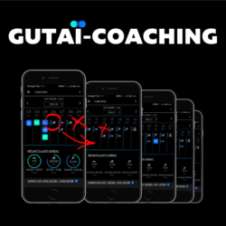Gutaï coaching